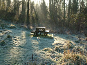 Frosty Prince's Plot Nature Reserve